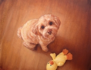 manish-coco-and-the-yellow-duckoc14x18-copy